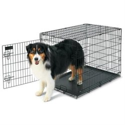 Petmate Home-Training Wire Dog Kennel - Large