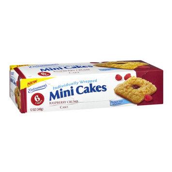 Entenmann's Raspberry Crumb Mini Cakes - 6 CT