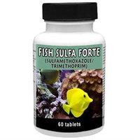Thomas Laboratories THOMAS LABS 001TLFS-60 Fish Sulfa Forte 60 Tablets
