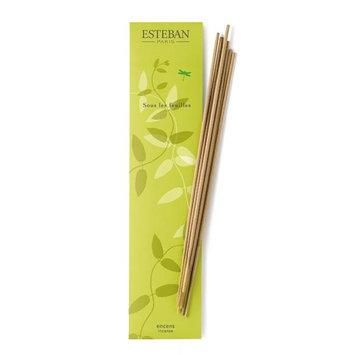 Esteban Sous Les Feulles Bamboo Stick Incense