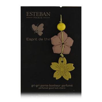 Esteban Espirit de The Perfumed Good Luck Charm Air Freshener