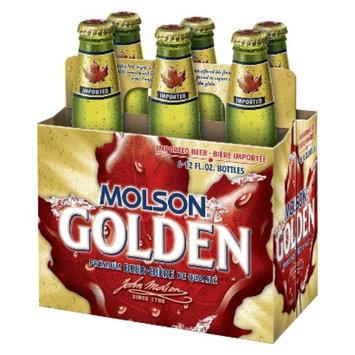 Molsen Golden Premium Beer