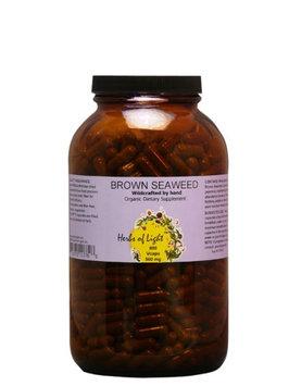 Living Foods Brown Seaweed Herbs of Light 800 Caps