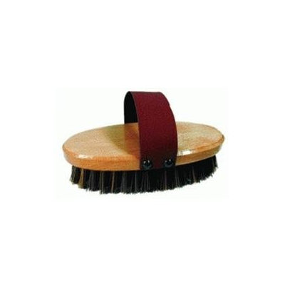 Imported Horse Supply Imported Horse & supply Nifty Brush 7.5 X 3.5 Inch - 245621