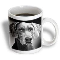 Recaro North 3dRose - VWPics Dogs n Cats - Braque de Weimar - 11 oz mug