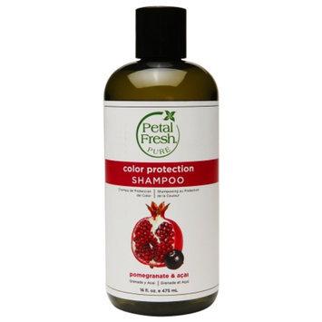 Petal Fresh Pure Shampoo, Color Protection Pomegranate & Acai, 16 fl oz