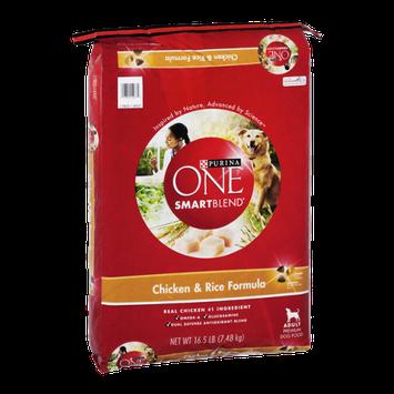 Purina One SmartBlend Chicken & Rice Formula Adult Premium Dog Food