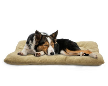 FurHaven Watches Clay Terry & Suede Nap Mat Pet Bed