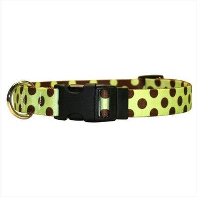 Yellow Dog Design GBRP100TC Green and Brown Polka Dot Standard Collar - Teacup