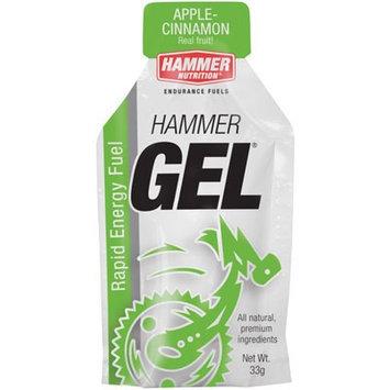 Hammer Nutrition Gel Apple Cinnamon, 24 Pack - Men's