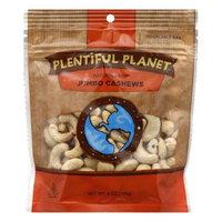 Plentiful Planet Nut Cashew 240 Raw Bag 6 OZ (Pack of 6)
