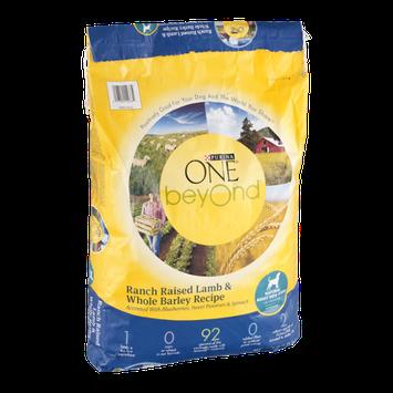 One Beyond Dry Dog Food Ranch Raised Lamb & Whole Barley Recipe