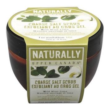 Upper Canada Soap   Candle Upper Canada Soap & Candle Wild Mint Lime Coarse Salt Scrub, 9.6-Ounces