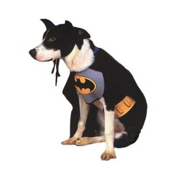 Buy Seasons Batman Pet Costume - Small