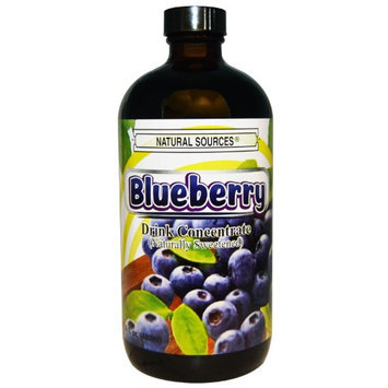 Natural Sources Drink Concentrate Blueberry 16 fl oz