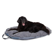 Classic Accessories Dog About Folding Pet Travel Bed