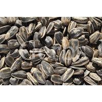 Gerbs Gourmet Seeds Light Sea Salt In-Shell Whole Sunflower Seeds - 5 Pound Deal