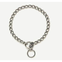 Coastal Pet Products DCP552012 12-Inch Titan Fine Chain Dog Training Choke/Collar with 2mm Link, Chrome