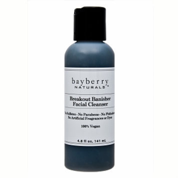 Bayberry Naturals Breakout Banisher Facial Cleanser