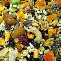 Higgins Premium Pet Foods Higgins Pet Food Mayan Harvest Tikal Blend Large Hookbill Diet 20lb