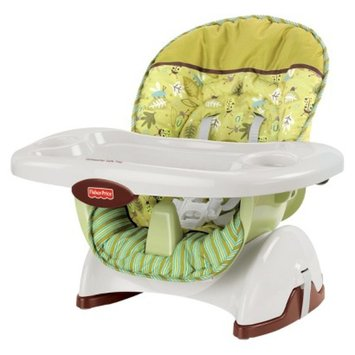 Highchairs Boosters Product Reviews Questions And