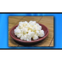 Lifetime Kefir Kefir Grains - Living Probiotic Enriched