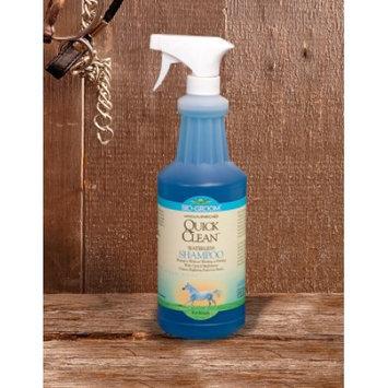 Bio Groom Bio-Groom Quick Clean Waterless Shampoo for Horses (32 oz)