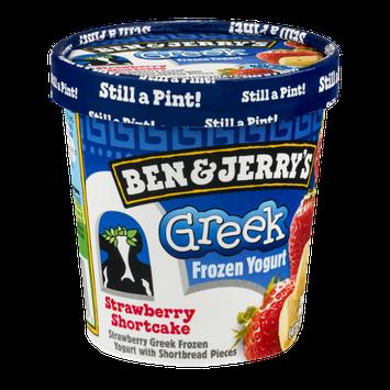Ben & Jerry's® Strawberry Shortcake Greek Frozen Yogurt
