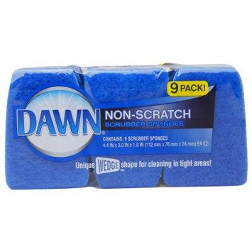 Dawn Non-Scratch Scrubber Sponges, Blue, 9 ea