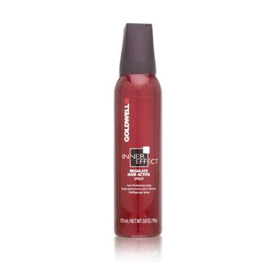 Goldwell Inner Effect Regulate Hair Active Spray