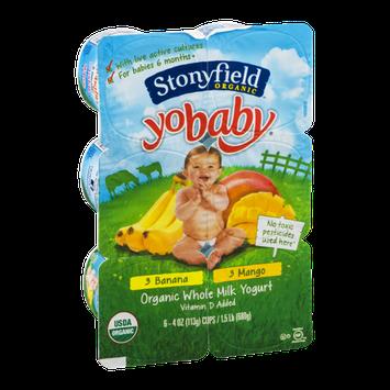 Stonyfield Organic YoBaby Organic Whole Milk Yogurt Cups Banana and Mango - 6 CT
