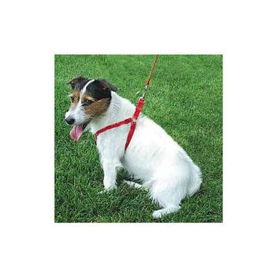 Coastal Pet Products DCP6345RED Comfort Wrap Adjustable Harness