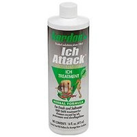 Kordon Ich Attack Disease Inhibitor - 16 oz