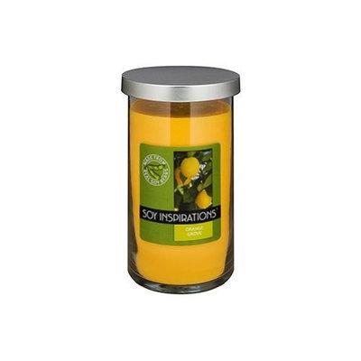 Soy Basics Seeds Soy Basics Seed Soy Candle, Orange Grove, 18.5-Ounce