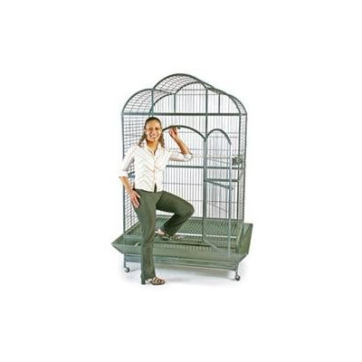 Prevue Pet Products 3155S Macaw Dometop Cage - Silverado