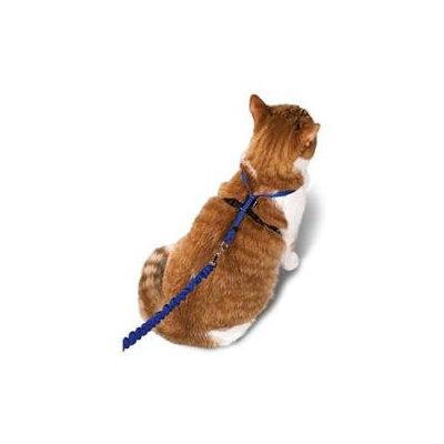 Premier Pet Products - Come Wi