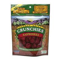 Crunchies Freeze Dried Snack Food Raspberries
