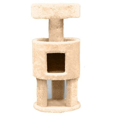 Petco North American Pet Condo with Penthouse Cat Furniture, 36-Inch (colors may vary)