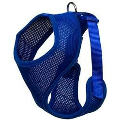 Four Paws Comfort Control Harness Blue Medium