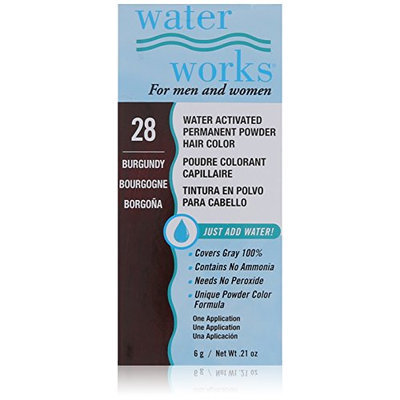 Waterworks Permanent Powder Hair Color #28 Burgundy