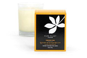 6 ozLavender/Orange Blossom Stockholm Coconut Wax Glass Candle