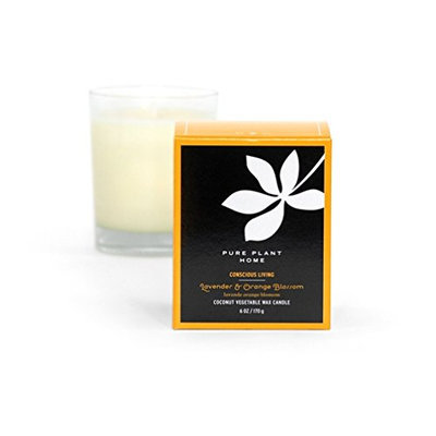 6 ozLavender/Orange Blossom Stockholm Coconut Wax Glass Candle