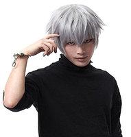 Tokyo Ghouls Ken Kaneki Cosplay Wig Short Halloween Party Silver White