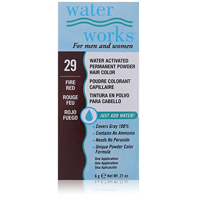 Waterworks Permanent Powder Hair Color #29 Fire Red