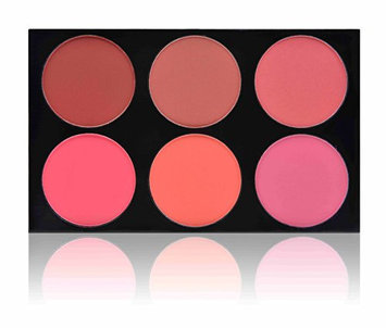 SHANY Masterpiece 6 Colors Large Blush Palette/Refill -