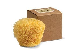 Wool Sponge Gift Box
