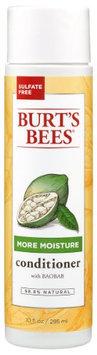 Burt's Bees More Moisture Conditioner