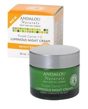 Andalou Naturals Purple Carrot Plus C Luminous Night Cream