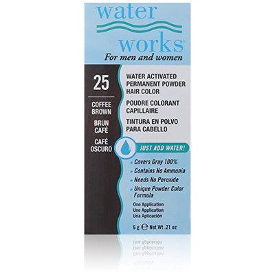 Waterworks Permanent Powder Hair Color #25 Coffee Brown