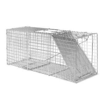 Advantek 20040B Catch and Release Live Animal Trap For Squirrels, 5 by 5 by 18-Inch
